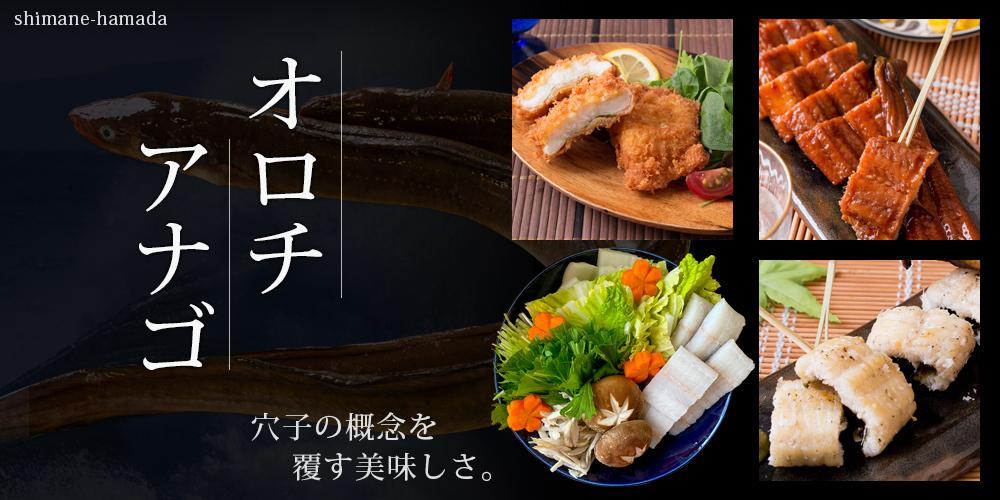 1st-cal-saijo.jpg
